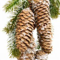 Firgrønn med kjegler, vinterdekorasjon, furugren til å henge, kjegledekor, snødekt L33cm