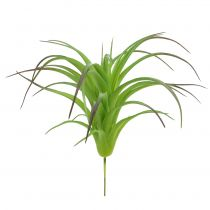 Deco tillandsia grønn 16cm 4stk