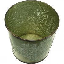Plante til høst, planter med bladdekor, metallbøtte grønn Ø14cm H12,5cm