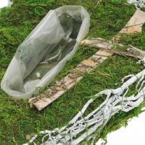 Planter dråpemose, vintreet minneblomster 40x20cm