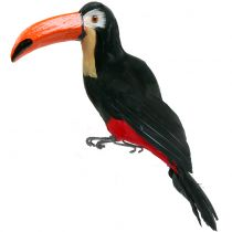 Dekorativ tukan med fjær svart L37cm