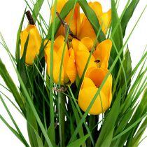 Tulipaner i en gryte gul 30cm