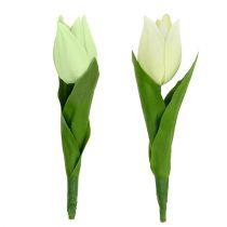 Vårdekorasjon, kunstige tulipaner, silkeblomster, dekorative tulipaner grønn / krem 12stk