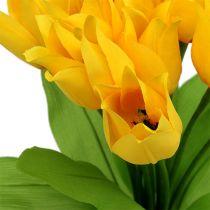 Tulipanskrå gul H30cm