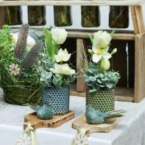 Planter dekorativ gryte grønn, brun Ø10cm H10cm sett med 2