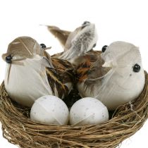 Fuglerede med egg og fugl 6stk