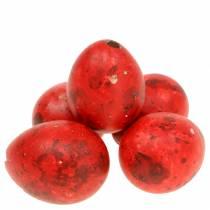 Vaktelegg rødblåste egg 50p