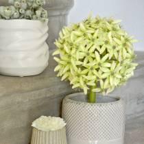 Prydløk Allium, silkeblomst, kunstig purregrønn Ø20cm L72cm