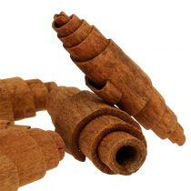 Kanel croissantdekorasjon 6,5 cm - 7 cm 30 stk