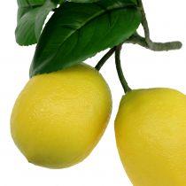 Sitron gren med 2 sitroner 24cm gul