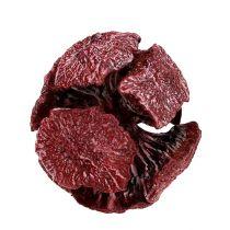 Cypress kongler 3cm mørk rød 500g
