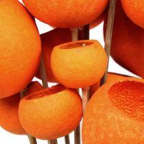 Bell Cup Mix på en pinne oransje 15stk