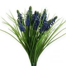 Druehyacinter 28cm - 30cm blå 15stk