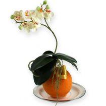 Blomsterskumkuler oransje 9cm 4stk