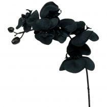 Orkide for å dekorere svart 54cm