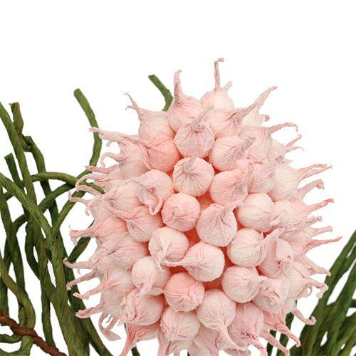 Blossom gren skum rosa / grønt 65cm