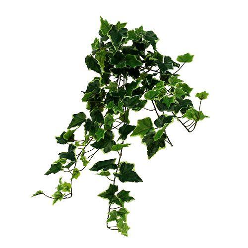 Ivy hanger hvitgrønn 70cm