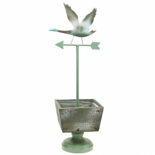 Plantegryte med fot Værhuggertre naturlig / grønn 26x20cm H68cm
