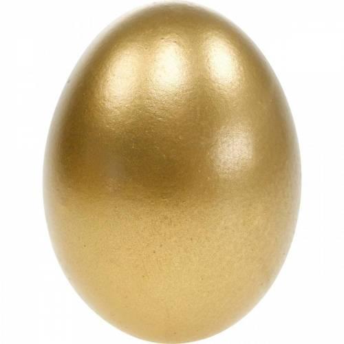 Kyllingegg blåste egg påskedekorasjon forskjellige farger 10stk
