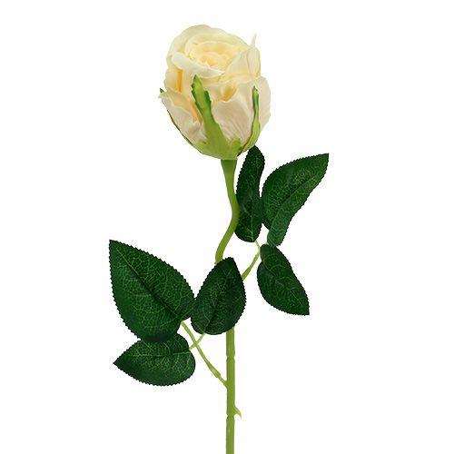 Kunstige blomster rose krem Ø6cm L50cm 6stk