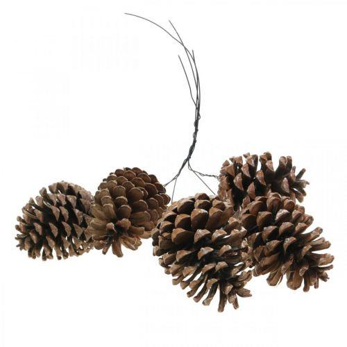 Maritime kjegler med wire, minnedager, julepynt, naturprodukt H8–13cm Ø6–9cm 50stk.