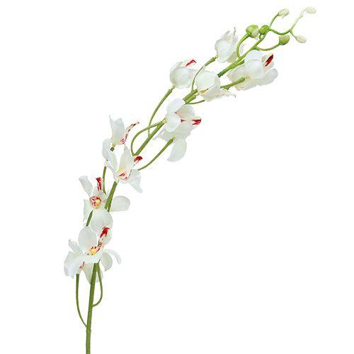 Orchid Mokara White 92cm 3stk