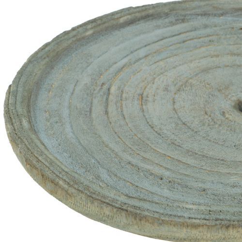 Dekorativ plate Paulownia tre Ø22cm