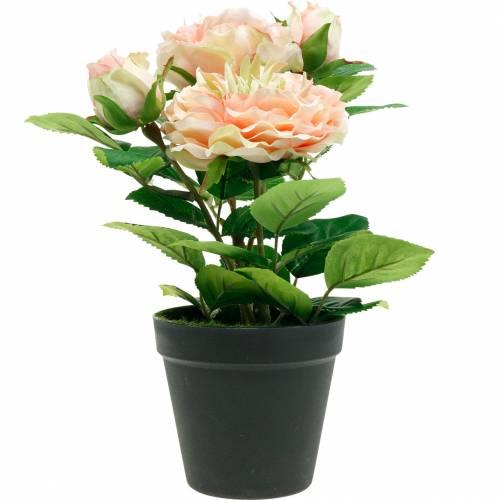 Dekorativ rose i en gryte, romantiske silkeblomster, rosa pion