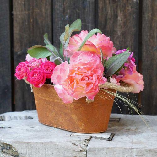 Metallskål med håndtak, høstdekorasjon, planter med patina L22cm H11cm