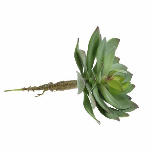 Sukkulent plante kunstgrønn 27cm