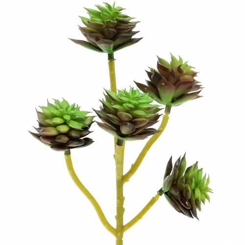 Sukkulent plukk grønn / brun 35,5 cm