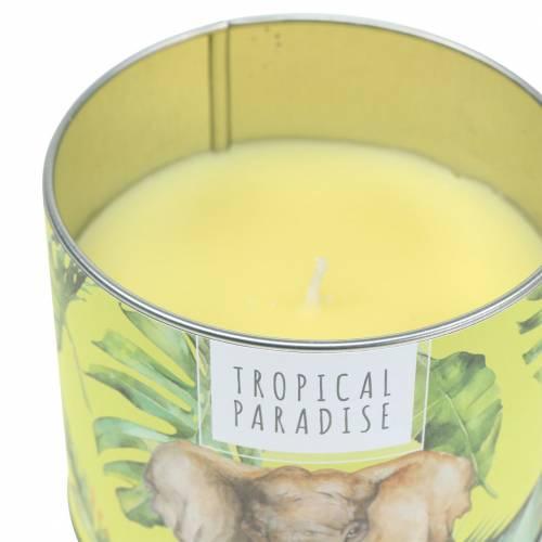 Duftlys i esken regnskog gul Ø9,5cm H8cm